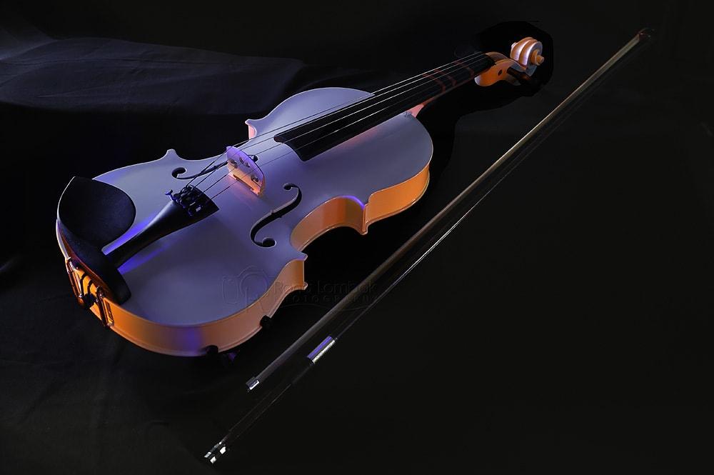 Уроки скрипки в Новосибирске
